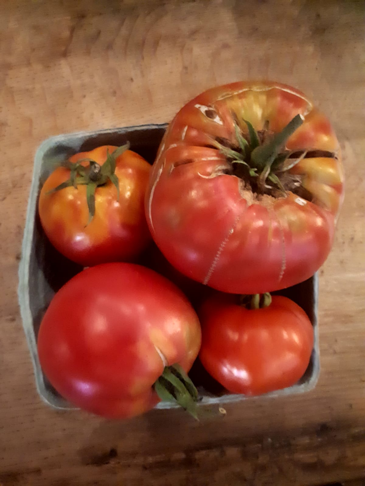 tomate-striped-german