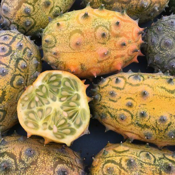 melon-kiwano